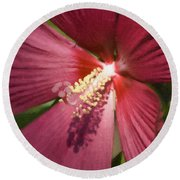 Red Disco Belle Hibiscus Painting Round Beach Towel