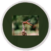 Red Dragonfly II Round Beach Towel