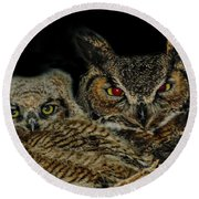 Red Eyed Mama And Baby Horned Owls Round Beach Towel