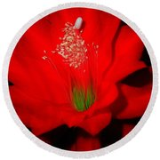 Red Flower For You Round Beach Towel