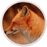 Red Fox 2 Round Beach Towel