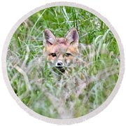 Red Fox Baby Hiding Round Beach Towel
