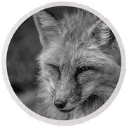 Red Fox In Black And White Round Beach Towel