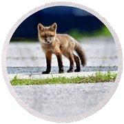 Red Fox Kit On Road Round Beach Towel