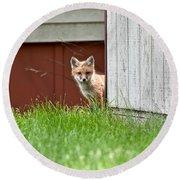 Red Fox Kit Peaking Around Old Barn Round Beach Towel