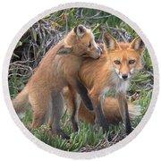 Red Fox Mama's Love Bite Round Beach Towel