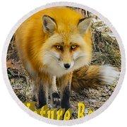 Red Fox Nature Boy Round Beach Towel