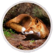 Red Fox Resting Square Round Beach Towel