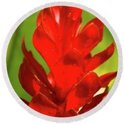 Red Ginger Bud After Rainfall Round Beach Towel