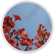 Red Gum Blossoms Australian Flowers Oil Painting Round Beach Towel