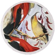 Red Hawaiian Honeycreeper Round Beach Towel