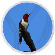 Red Headed Woodpecker On A Snag Round Beach Towel
