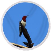 Red Headed Woodpecker On A Snag Round Beach Towel