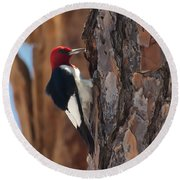 Red Headed Woodpecker Round Beach Towel