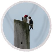 Red Headed Woodpeckers Round Beach Towel