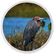 Red Heron Round Beach Towel