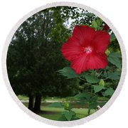 Red Hibiscus Highlights A Scene On The River Round Beach Towel
