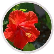 Red Hibiscus II Round Beach Towel