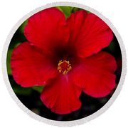 Red Hibiscus - Kauai Round Beach Towel