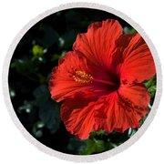 Red Hibiscus Round Beach Towel
