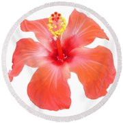 Red Hibiscus Vector Isolated Round Beach Towel