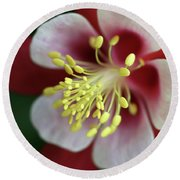 Red Hobbit Columbine 2 Round Beach Towel