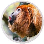 Red Howler Monkey Alpha Male Round Beach Towel