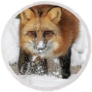 Red Hunter Round Beach Towel