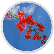 Red In The Sky Round Beach Towel