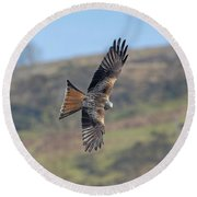 Red Kite Round Beach Towel