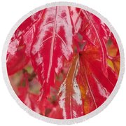 Red Leaf Abstract Round Beach Towel