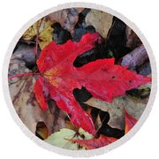 Red Leaf Round Beach Towel