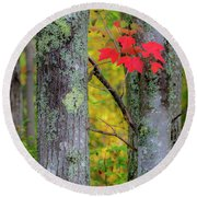 Red Leaves Round Beach Towel by Gary Lengyel
