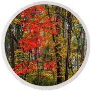 Red Leaves Of Autumn Round Beach Towel