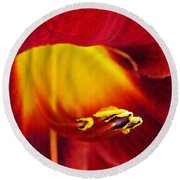 Red Lily Center 4 Round Beach Towel