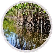Red Mangrove Roots Reflections In The Gordon River Round Beach Towel
