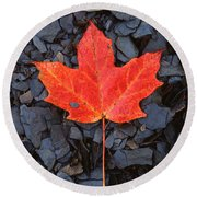 Red Maple Leaf On Black Shale Round Beach Towel