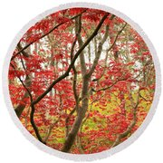 Red Maple Leaves And Branches Round Beach Towel