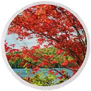 Red Maple On Lake Shore Round Beach Towel