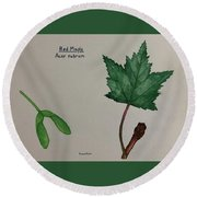 Red Maple Tree Id Round Beach Towel