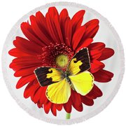 Red Mum With Dogface Butterfly Round Beach Towel