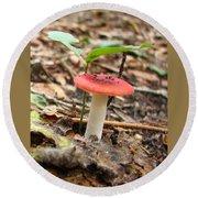 Red Mushroom 1 Round Beach Towel