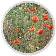 Red Poppies In A Summer Sun Round Beach Towel