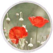 Red Poppies Round Beach Towel by Kim Hojnacki