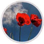 Red Poppies On Blue Sky Round Beach Towel