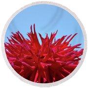 Red Purple Dahlia Flower Art Print Giclee Baslee Troutman Round Beach Towel