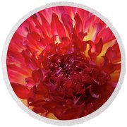 Red Purple Dahlia Flower Summer Dahlia Garden Baslee Troutman Round Beach Towel
