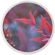 Red Red Leaves Round Beach Towel