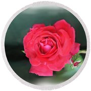 Red-red Rose. Round Beach Towel