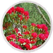 Red Rhododendron Garden Art Prints Rhodies Landscape Baslee Troutman Round Beach Towel